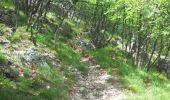 Randonnée Marche SAINTE-AGNES - Cime de Baudon depuis St Agnès - Photo 9
