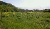 Randonnée Marche SENTHEIM - SentMichelbachSentheim - Photo 6
