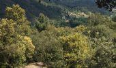 Randonnée Marche PONT-DE-LABEAUME - Ventadour-Nièigles- - Photo 1