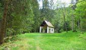 Randonnée Marche METZERAL - Schiessrothried, Altenweiher - Photo 7