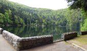 Randonnée Marche METZERAL - Schiessrothried, Altenweiher - Photo 6