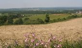 Trail Motor Houyet - Circuit roadbook auto/moto - Paysages et beautés naturelles - 360° - Photo 21