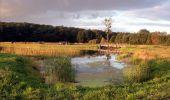 Trail Motor Houyet - Circuit roadbook auto/moto - Paysages et beautés naturelles - 360° - Photo 29