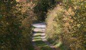 Trail Motor Houyet - Circuit roadbook auto/moto - Paysages et beautés naturelles - 360° - Photo 26