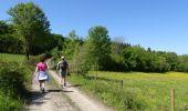 Randonnée Marche Couvin - Balade au fil de l'Eau Noire à Couvin - Photo 4