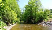 Randonnée Marche Couvin - Balade au fil de l'Eau Noire à Couvin - Photo 5