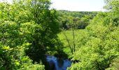 Randonnée Marche Couvin - Balade au fil de l'Eau Noire à Couvin - Photo 6