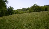 Trail Walk Visé - Visé, Natura des sites qui valent le détour Lg17 - Photo 3