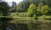 Trail Walk Visé - Visé, Natura des sites qui valent le détour Lg17 - Photo 11