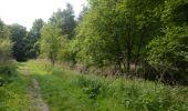 Trail Walk Visé - Visé, Natura des sites qui valent le détour Lg17 - Photo 9