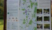 Trail Walk Visé - Visé, Natura des sites qui valent le détour Lg17 - Photo 13