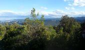 Trail Walk SAINT-PAUL-DE-FENOUILLET - Gorges galamus-Nissol_T - Photo 1