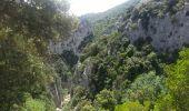 Trail Walk SAINT-PAUL-DE-FENOUILLET - Gorges galamus-Nissol_T - Photo 11