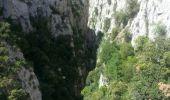 Trail Walk SAINT-PAUL-DE-FENOUILLET - Gorges galamus-Nissol_T - Photo 10