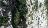 Trail Walk SAINT-PAUL-DE-FENOUILLET - Gorges galamus-Nissol_T - Photo 8