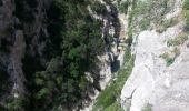 Trail Walk SAINT-PAUL-DE-FENOUILLET - Gorges galamus-Nissol_T - Photo 7