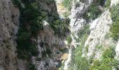 Trail Walk SAINT-PAUL-DE-FENOUILLET - Gorges galamus-Nissol_T - Photo 6