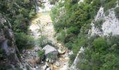 Trail Walk SAINT-PAUL-DE-FENOUILLET - Gorges galamus-Nissol_T - Photo 5