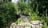 Trail Walk SAINT-PAUL-DE-FENOUILLET - Gorges galamus-Nissol_T - Photo 3