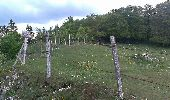 Randonnée Marche Les Verrières - Le grand Taureau - Photo 20