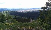 Randonnée Marche Les Verrières - Le grand Taureau - Photo 18