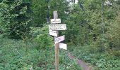 Randonnée Marche Les Verrières - Le grand Taureau - Photo 13