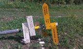 Randonnée Marche Les Verrières - Le grand Taureau - Photo 10