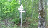 Randonnée Marche Les Verrières - Le grand Taureau - Photo 9