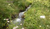 Trail Walk Nendaz - Bisse de Salins 03.06.14 - Photo 2