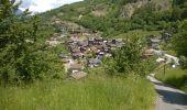 Trail Walk Nendaz - Bisse de Salins 03.06.14 - Photo 5