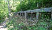 Trail Walk Nendaz - Bisse de Salins 03.06.14 - Photo 1