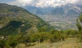 Trail Walk Nendaz - Bisse de Salins 03.06.14 - Photo 3