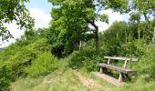 Randonnée Marche Yvoir - Balade à Yvoir - Photo 5