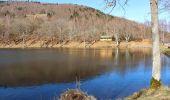 Trail Walk NIEDERBRUCK - Niederbruck Fennematt - Photo 2