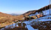 Trail Walk NIEDERBRUCK - Niederbruck Fennematt - Photo 3