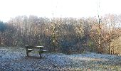 Trail Walk Viroinval - Viroinval (01) -La Roche aux Faucons - Photo 4