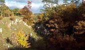 Trail Walk Viroinval - Viroinval (01) -La Roche aux Faucons - Photo 6