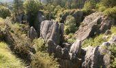Trail Walk Viroinval - Viroinval (01) -La Roche aux Faucons - Photo 3