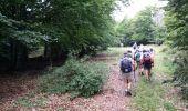 Randonnée Marche AUREL - ventouret - Photo 7