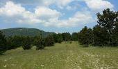 Randonnée Marche AUREL - ventouret - Photo 5