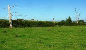 Randonnée V.T.T. POUILLY-LES-NONAINS - La Croix de Saint Martin de Boisy - Photo 3