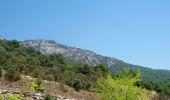 Trail Walk COLOMBIERES-SUR-ORB - Tour des Gorges de Colombières et d'Héric - Photo 6