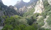 Trail Walk COLOMBIERES-SUR-ORB - Tour des Gorges de Colombières et d'Héric - Photo 1