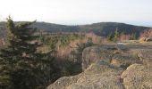 Trail Walk LUTZELHOUSE - Rocher de Mutzig - Lutzelhouse - Photo 4