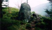 Trail Walk LUTZELHOUSE - Rocher de Mutzig - Lutzelhouse - Photo 1