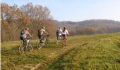 Trail Mountain bike MEZENS - Sur les hauteur du Tarn - Mézens - Photo 1