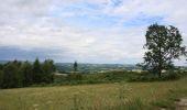 Randonnée V.T.T. CHATEAUNEUF-LA-FORET - La forêt de Châteauneuf la Forêt - Photo 1