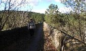 Trail Mountain bike SAINT-PAUL-LE-JEUNE - Du Viaduc de Doulovy au Fort de Banne - Saint Paul le Jeune - Photo 5