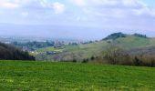 Trail Walk SAINT-MEDARD-EN-FOREZ - La Randonnée des Moulins (2014-VTT-26km) - Saint Médard en Forez - Photo 6