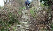 Trail Walk SAINT-MEDARD-EN-FOREZ - La Randonnée des Moulins (2014-VTT-26km) - Saint Médard en Forez - Photo 2